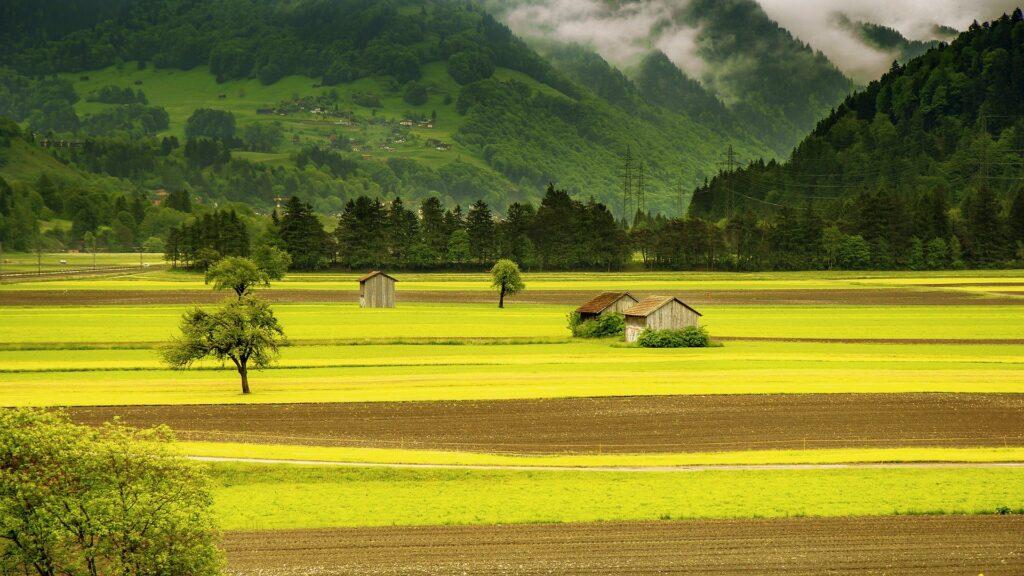 nature rural rediscover